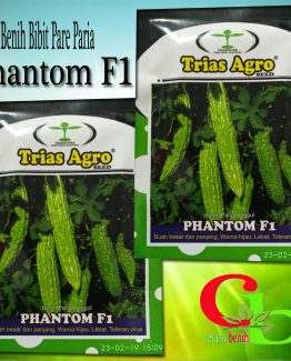 Benih Bibit Pare Paria Phantom F1